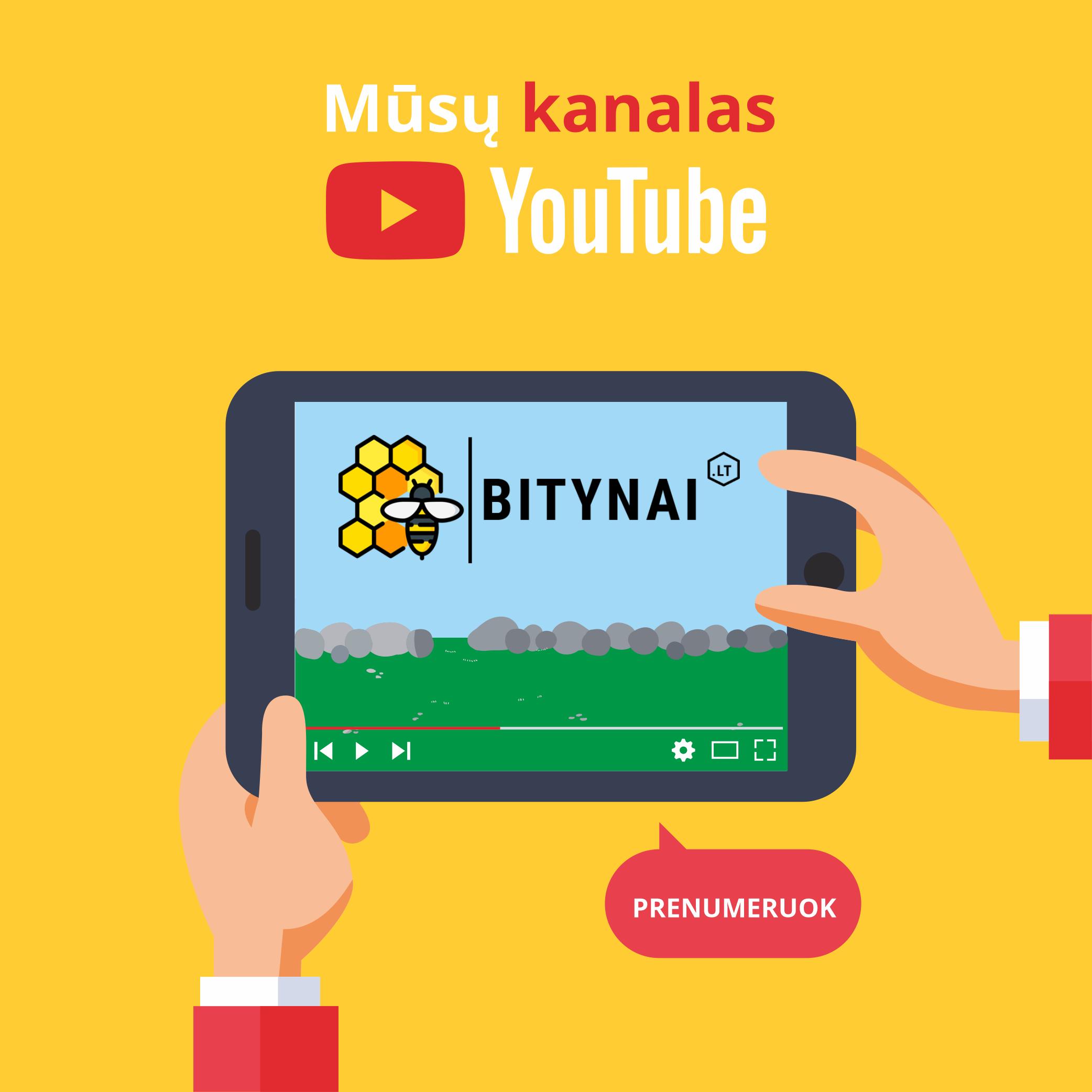Youtube kanalas Bitynai.lt